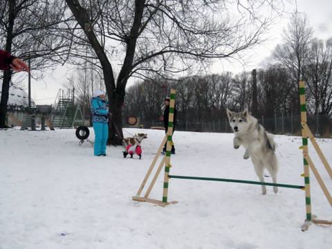 http://se.uploads.ru/t/45MkU.jpg