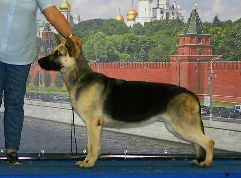 http://se.uploads.ru/t/4I07f.jpg