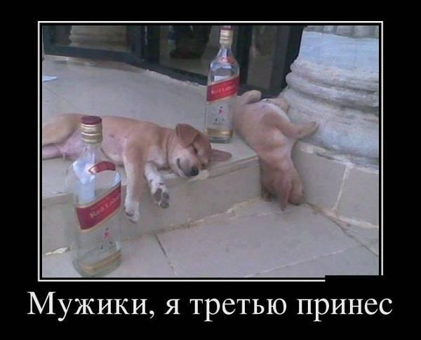 http://se.uploads.ru/t/4Jstx.jpg