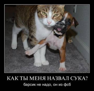 http://se.uploads.ru/t/4N86C.jpg