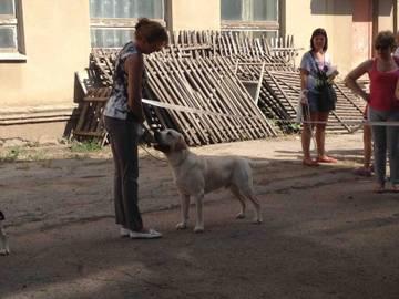 http://se.uploads.ru/t/5Am3l.jpg
