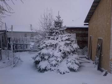 http://se.uploads.ru/t/5ZsVo.jpg