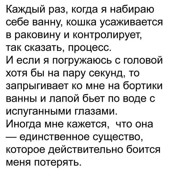 http://se.uploads.ru/t/6c2gH.jpg