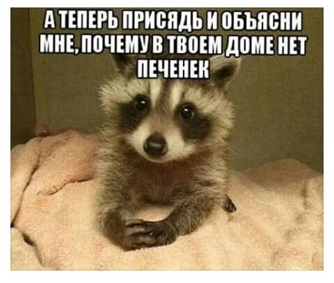 http://se.uploads.ru/t/6j5xR.jpg
