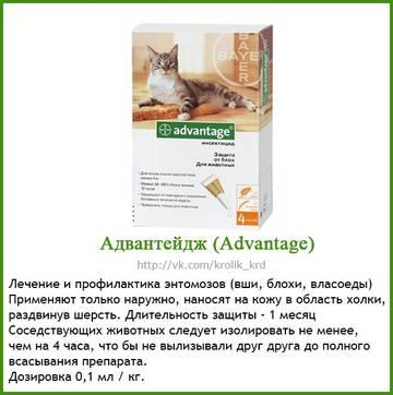 http://se.uploads.ru/t/7OUai.jpg