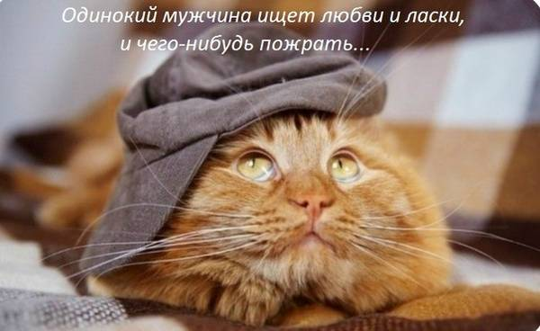 http://se.uploads.ru/t/7gvh2.jpg
