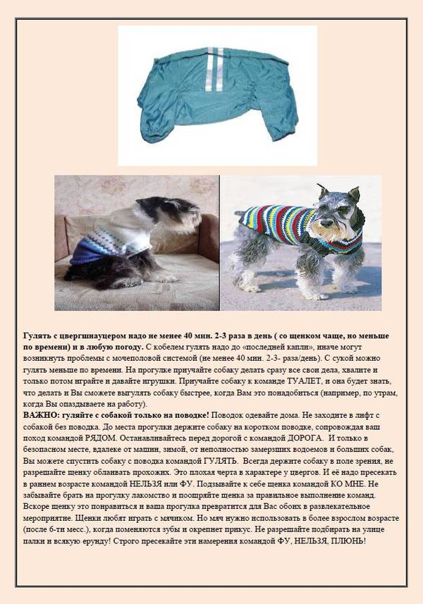 http://se.uploads.ru/t/8zYIh.jpg