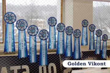 Наградные розетки на заказ от Golden Vikont 9YhZP