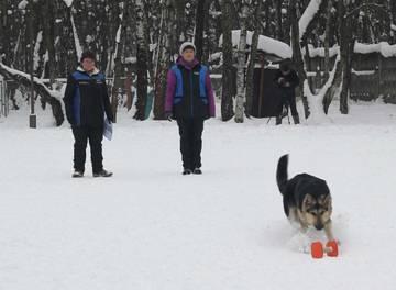 http://se.uploads.ru/t/9gmea.jpg