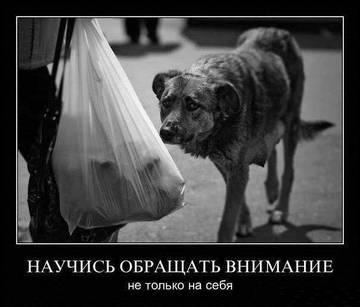 http://se.uploads.ru/t/9jUF5.jpg