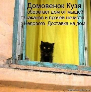 http://se.uploads.ru/t/9mvPZ.jpg