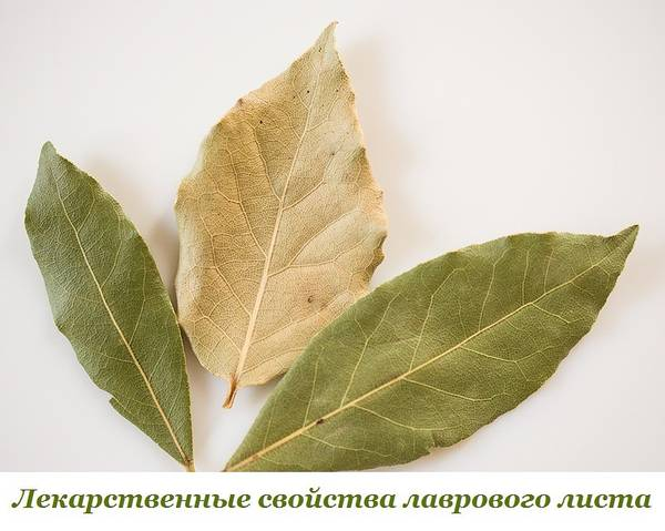 http://se.uploads.ru/t/9qoKM.jpg
