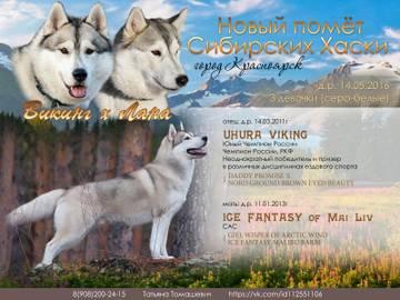 http://se.uploads.ru/t/9y4MD.jpg