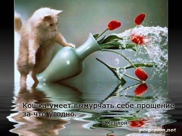 http://se.uploads.ru/t/AXClU.jpg