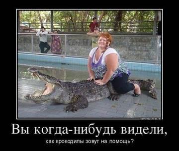 http://se.uploads.ru/t/Ab9MG.jpg