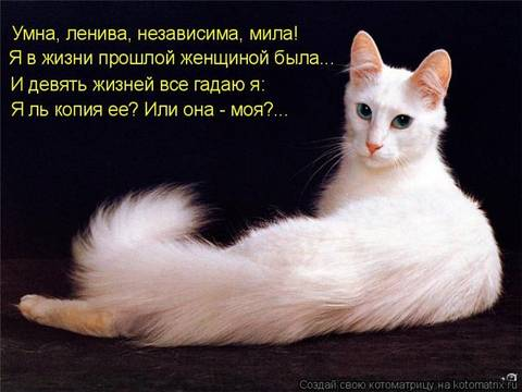 http://se.uploads.ru/t/AlSHb.jpg