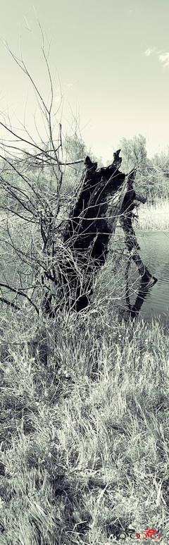 http://se.uploads.ru/t/CjABK.jpg