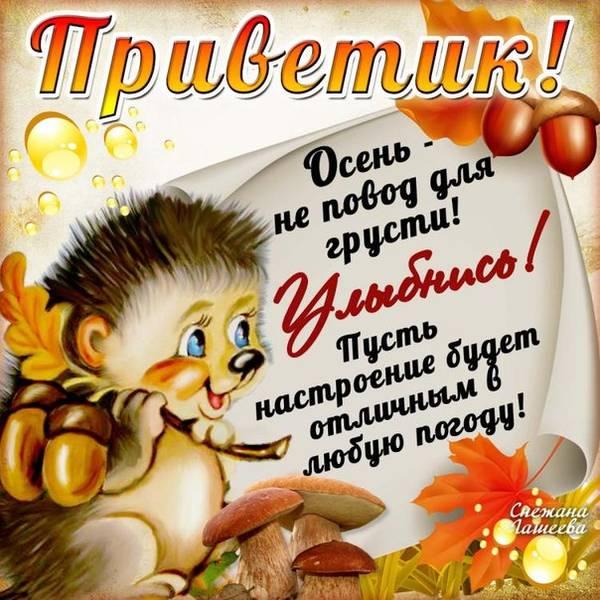 http://se.uploads.ru/t/DksS8.jpg