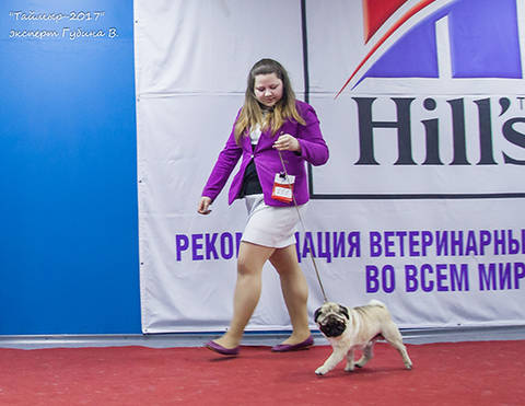 http://se.uploads.ru/t/Dy0BS.jpg