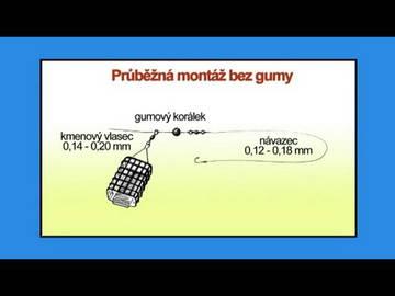 http://se.uploads.ru/t/DzpWc.jpg