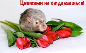http://se.uploads.ru/t/EX1WN.jpg