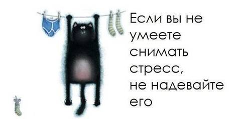 http://se.uploads.ru/t/EhTie.jpg