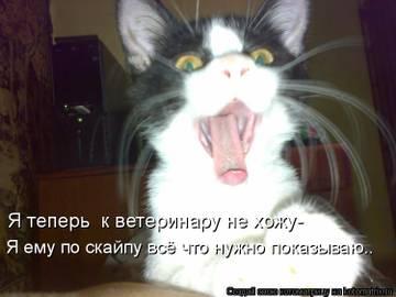 http://se.uploads.ru/t/ElQ09.jpg