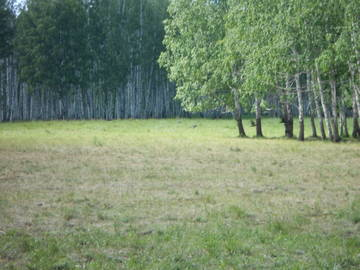 http://se.uploads.ru/t/EqZXj.jpg
