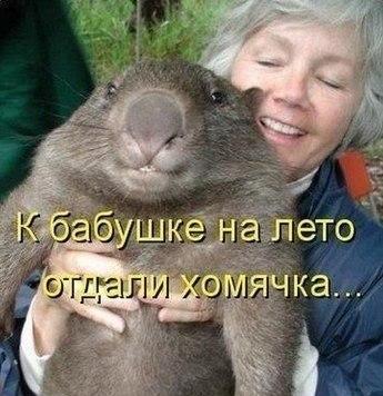 http://se.uploads.ru/t/FZIqP.jpg