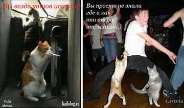 http://se.uploads.ru/t/GVLch.jpg
