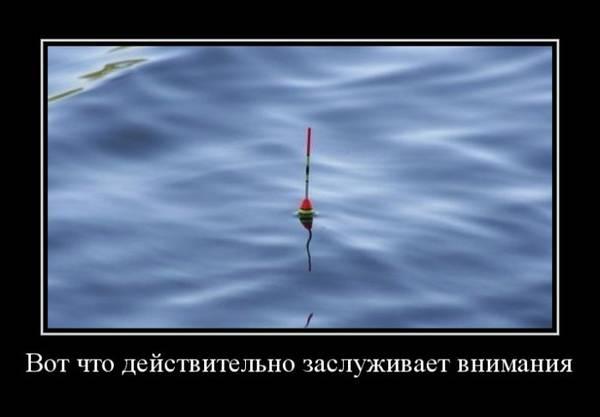 http://se.uploads.ru/t/H4aiL.jpg