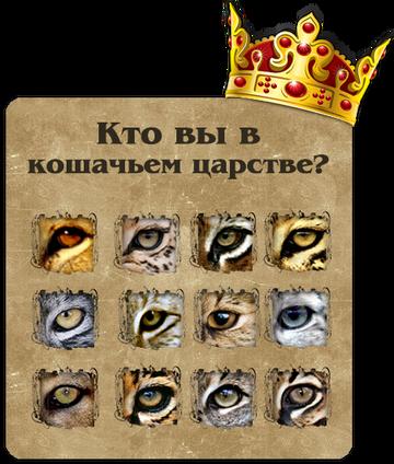 http://se.uploads.ru/t/HC78W.png