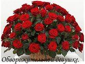 http://se.uploads.ru/t/HGVw9.jpg
