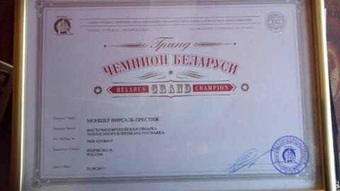 http://se.uploads.ru/t/Heyrc.jpg