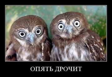 http://se.uploads.ru/t/HfqAo.jpg