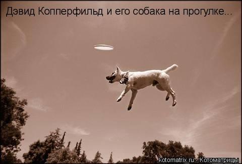 http://se.uploads.ru/t/I1h6D.jpg