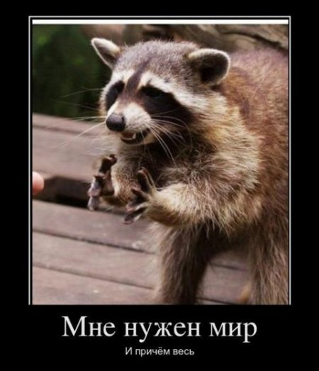 http://se.uploads.ru/t/IuzGD.jpg