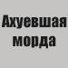 http://se.uploads.ru/t/Iw3GX.jpg