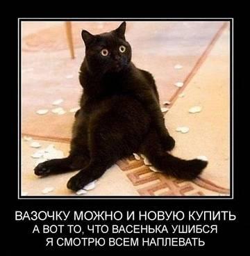 http://se.uploads.ru/t/K29t6.jpg