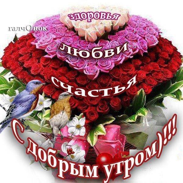 http://se.uploads.ru/t/KiIeH.jpg