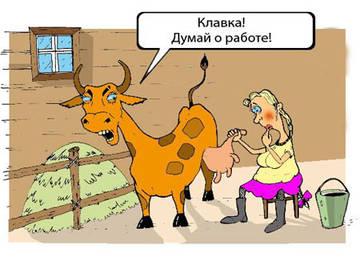 http://se.uploads.ru/t/L9TWO.jpg