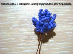http://se.uploads.ru/t/LYIcy.jpg
