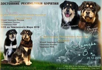 http://se.uploads.ru/t/Lzy36.jpg