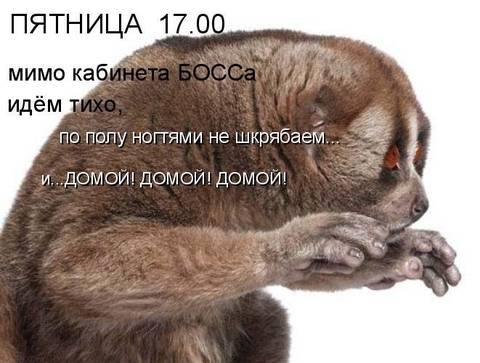 http://se.uploads.ru/t/MDoZ5.jpg