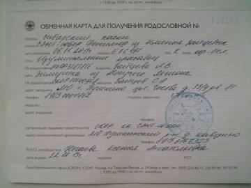 http://se.uploads.ru/t/Mbe6S.jpg