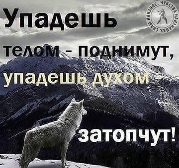 http://se.uploads.ru/t/NeSqx.jpg