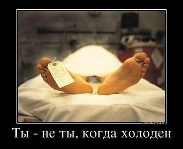 http://se.uploads.ru/t/OXTf8.jpg