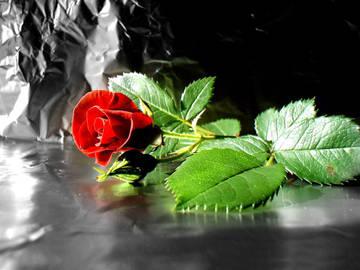 http://se.uploads.ru/t/P7UXR.jpg