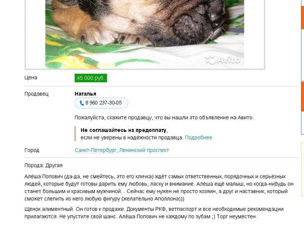http://se.uploads.ru/t/P9yrI.jpg