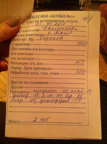 http://se.uploads.ru/t/QP0Mn.jpg